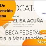 Aprovecha Las Becas De Manutención Mexicana