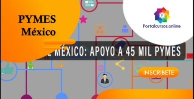 Gobierno Mexicano Otorga 25 Mil Pesos A PYMES